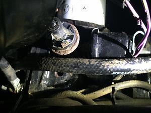 oil senindin1.jpg