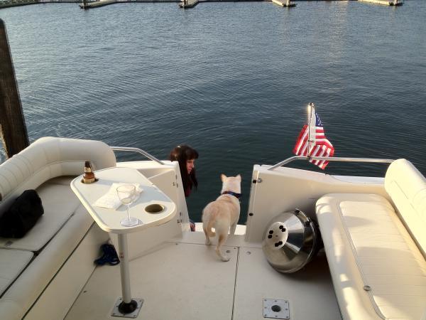 Teaching Romo-dog that water is wet